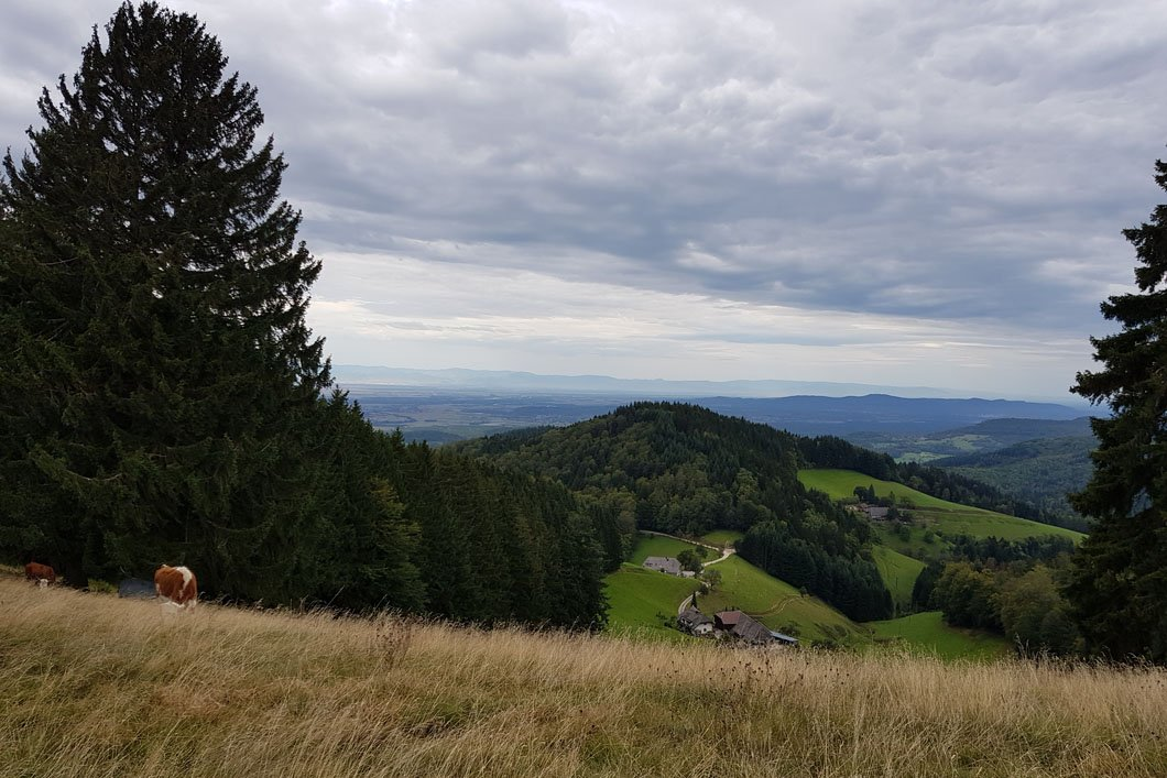 Etzenbach-5