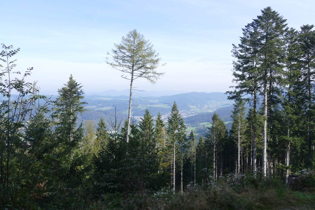 Hörnleberg-4