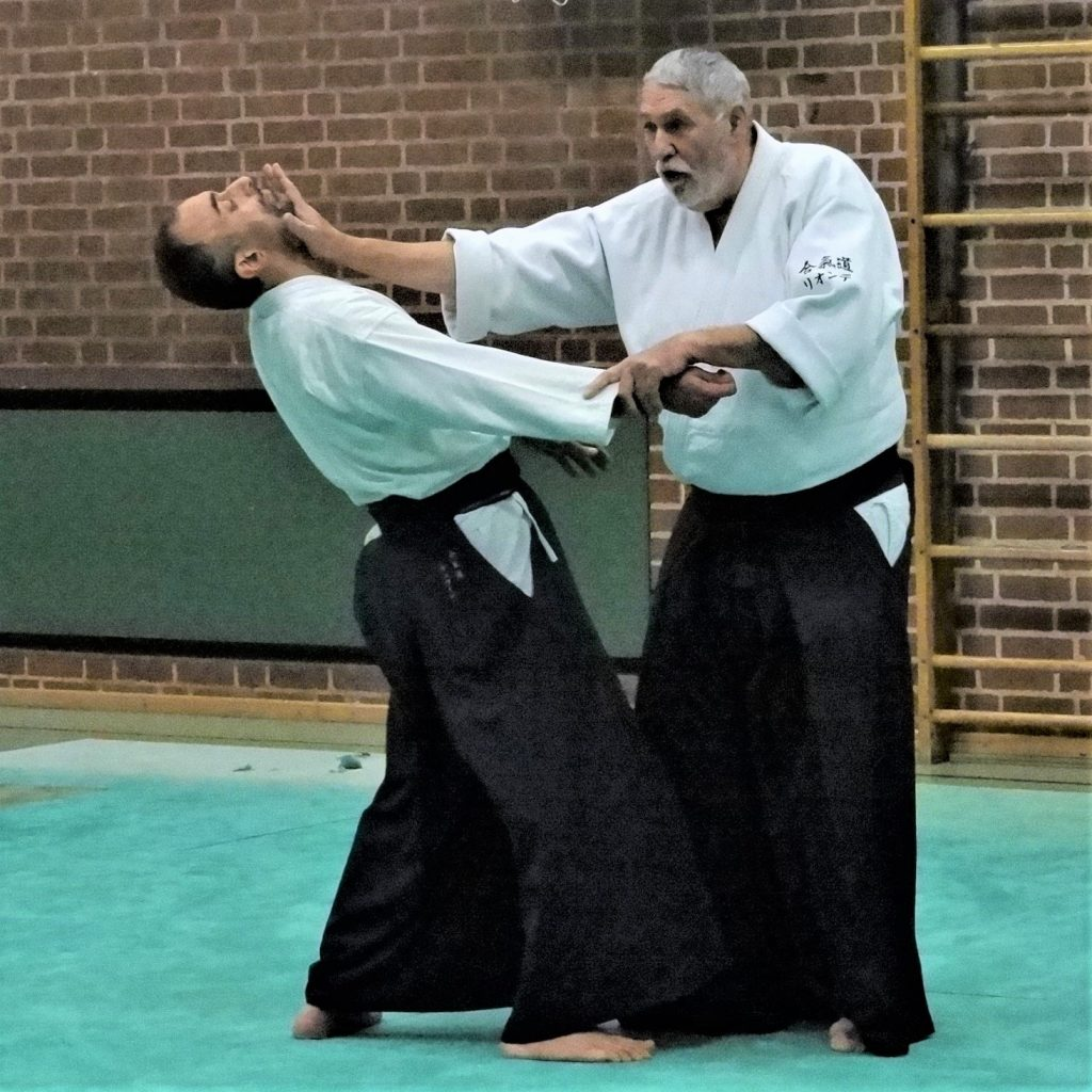 Aikido Lehrgangsbesuche